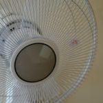 夏の必需品 扇風機の電気代って いったいいくら? 24時間調査してみたところ・・・!?