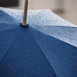 置き場所に困る傘を車内で簡単に収納するグッズを紹介!