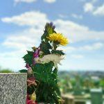 お墓参りに適したお花の種類は? お花の選び方とマナー